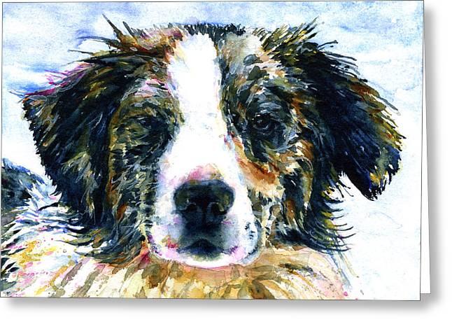 Family Member Greeting Cards - Australian Shepherd JAKE Greeting Card by John D Benson