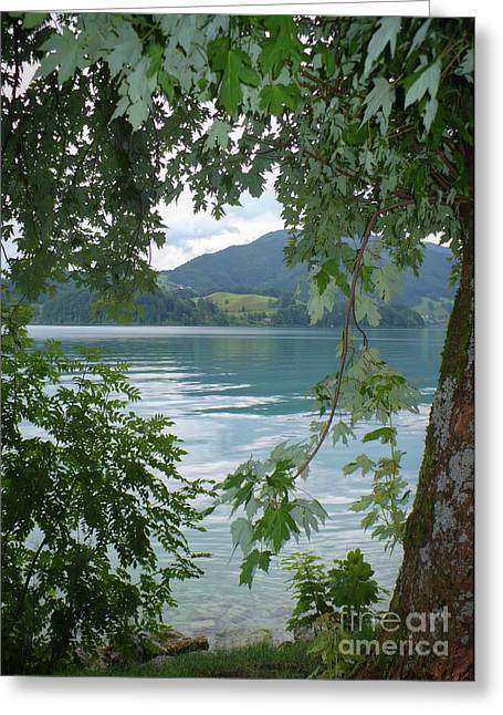 Blue And Green Greeting Cards - Austrian Lake through the Trees Greeting Card by Carol Groenen