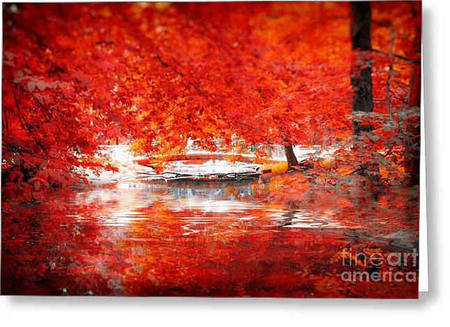 Autumn 2 Greeting Card by SK Pfphotography