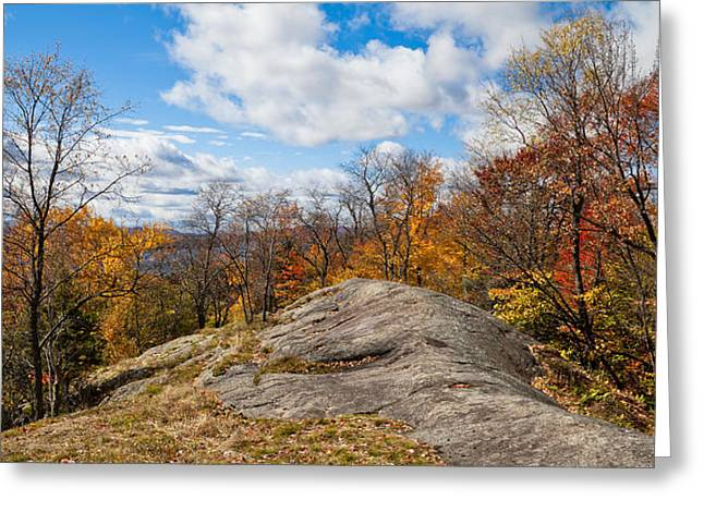 Fir Trees Greeting Cards - Autumn Above Eagle Bay NY Greeting Card by David Patterson