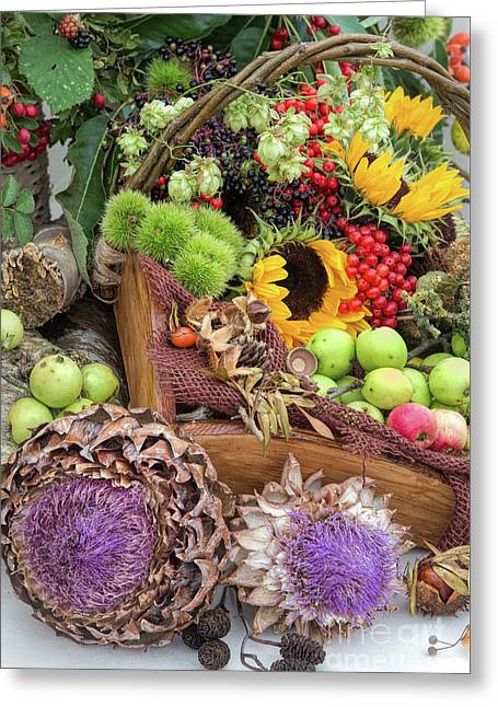 Autumn Abundance Greeting Card by Tim Gainey