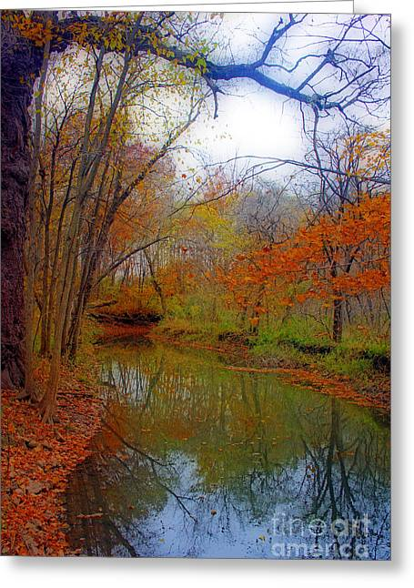 Greeting Cards - Autumn Along Pikes River Greeting Card by Kay Novy
