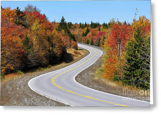 Allegheny Greeting Cards - Autumn along the Highland Scenic Highway Greeting Card by Thomas R Fletcher