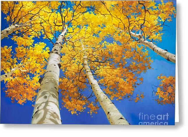 Autumn Aspen Canopy Greeting Card by Gary Kim