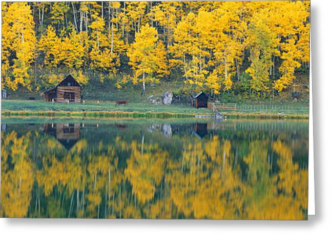 Durango Greeting Cards - Autumn Aspens Along Route 550, North Greeting Card by Panoramic Images