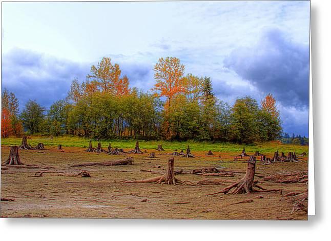 Dry Lake Greeting Cards - Autumn at Alder Lake Greeting Card by David Patterson
