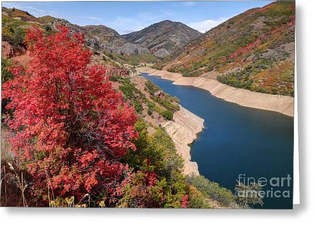 Canyon Lake Greeting Cards - Autumn at Causey Reservoir - Utah Greeting Card by Gary Whitton