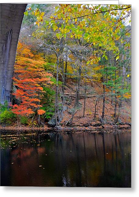 Charles River Greeting Cards - Autumn at Echo bridge Greeting Card by Corinne Rhode