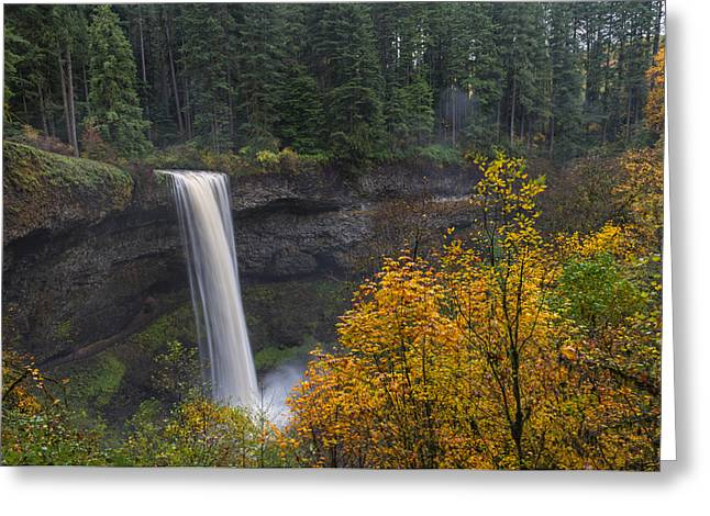 Autumn At South Falls Greeting Card by Loree Johnson
