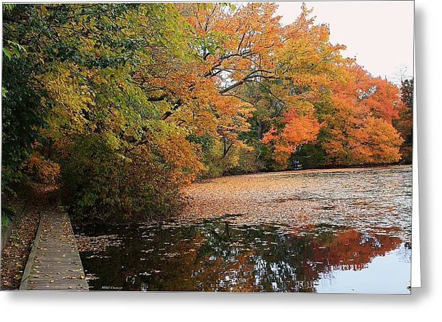 Mikki Cucuzzo Greeting Cards - Autumn at the Lake Greeting Card by Mikki Cucuzzo