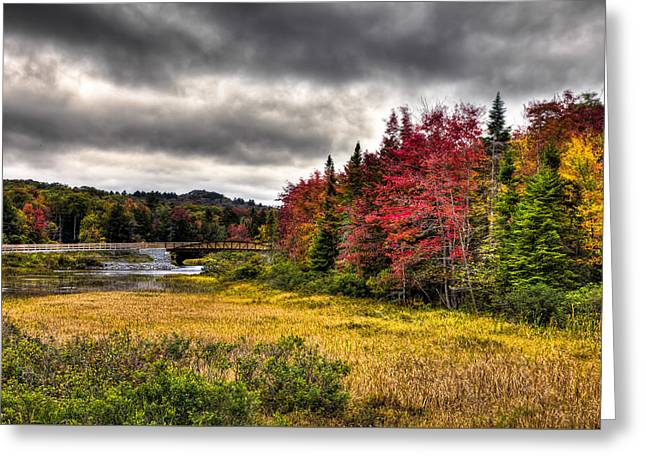 Reflections In River Greeting Cards - Autumn at the TOBIE Trail Bridge Greeting Card by David Patterson