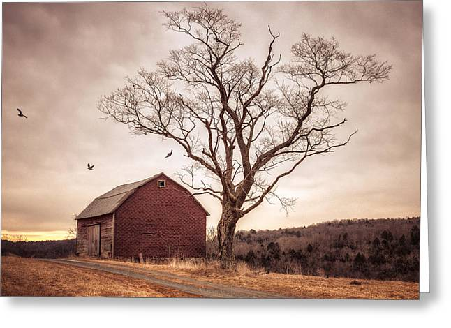 Autumn Barn And Tree Greeting Card by Gary Heller