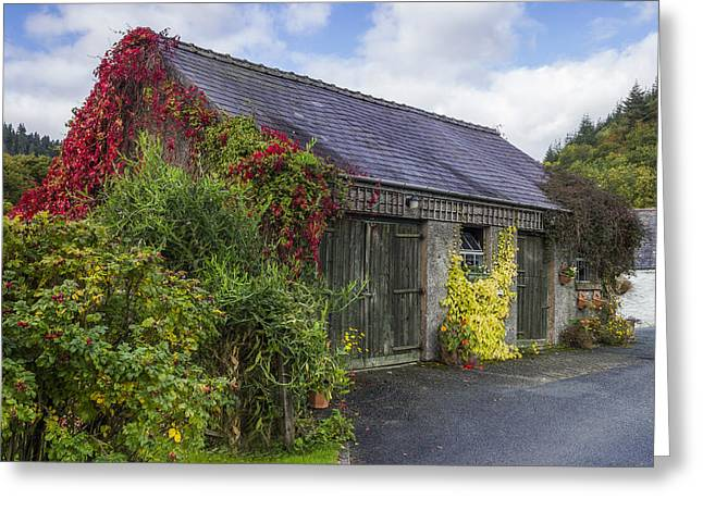 Fall Colors Greeting Cards - Autumn Barn Greeting Card by Ian Mitchell