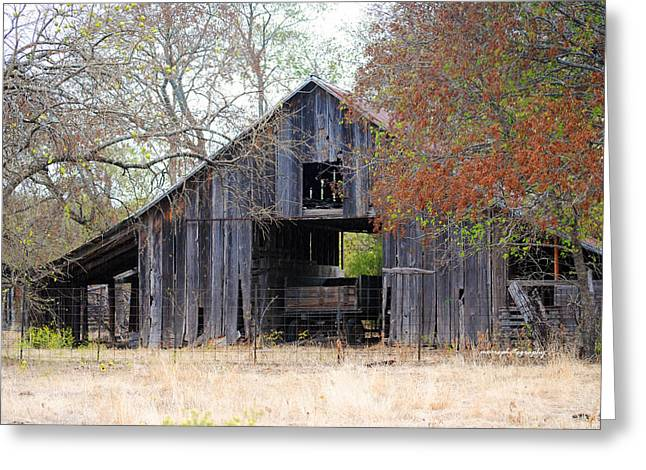 Autumn Barn Greeting Card by Lisa Moore