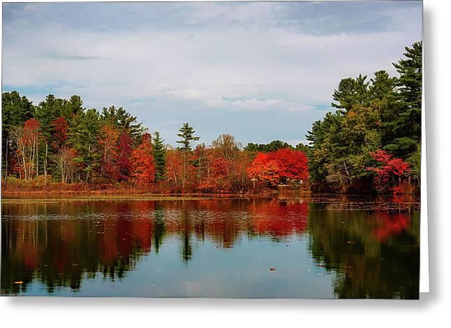 Autumn Beauty Greeting Card by Jennifer Burk