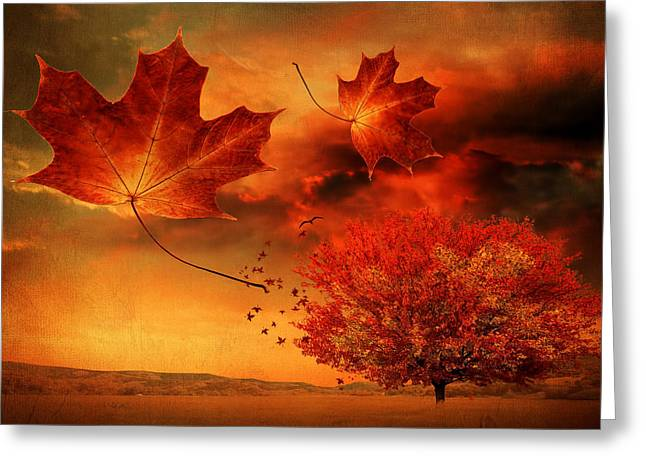 Red Maple Trees Greeting Cards - Autumn Blaze Greeting Card by Lourry Legarde