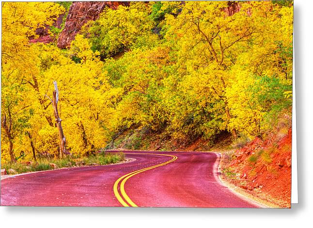 Scenic Drive Greeting Cards - Autumn Boulevard Greeting Card by James Marvin Phelps
