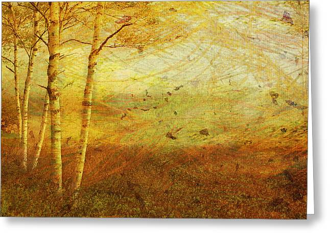 Autumn Breeze Greeting Card by Ken Walker