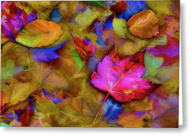 Autumn Breeze Greeting Card by Paul Wear