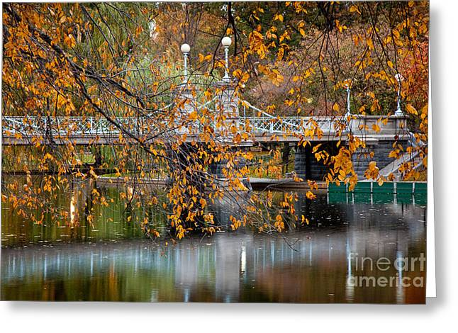 Recently Sold -  - Bay Bridge Greeting Cards - Autumn Bridge Greeting Card by Susan Cole Kelly