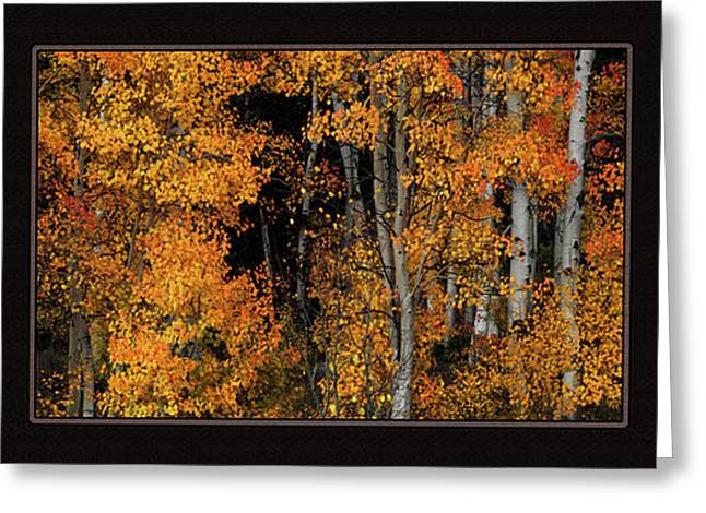 Autumn Brilliance Triptych Greeting Card by Leland D Howard
