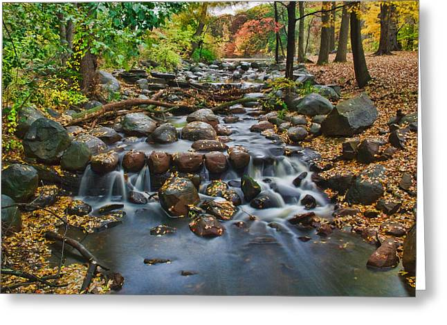 Babbling Greeting Cards - Autumn Brook Greeting Card by June Marie Sobrito