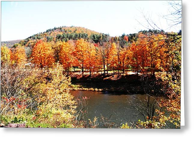 Autumn By the River Greeting Card by Jeanette Oberholtzer