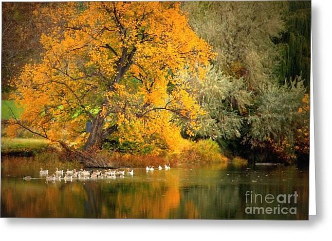 Impressionistic Landscape. Fall Greeting Cards - Autumn Calm Greeting Card by Carol Groenen