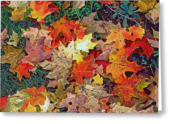 Fall Trees Greeting Cards - Autumn Carpet Greeting Card by Jean Hall