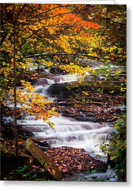 Autumn Cascade  Greeting Card by Parker Cunningham