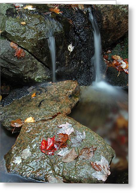 Autumn Cascades Greeting Card by Juergen Roth
