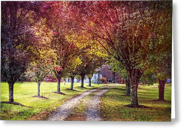 Autumn Charm Greeting Card by Debra and Dave Vanderlaan