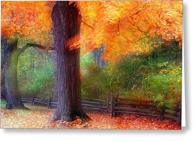 Fence Line Greeting Cards - Autumn Color Maple Trees By Fence Line Greeting Card by Panoramic Images