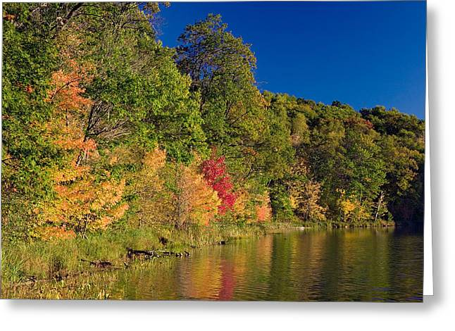 Autumn Color Trees Along Beauty Lake Greeting Card by Panoramic Images