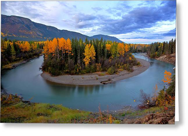 Autumn Colors Along Tanzilla River In Northern British Columbia Greeting Card by Mark Duffy
