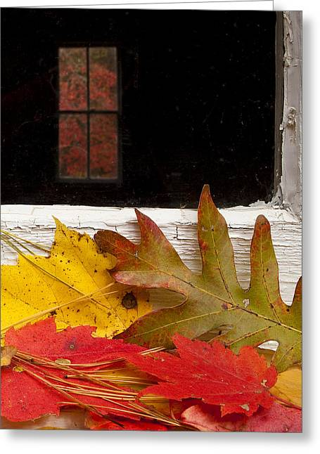 Smoky Greeting Cards - Autumn Colors Greeting Card by Andrew Soundarajan