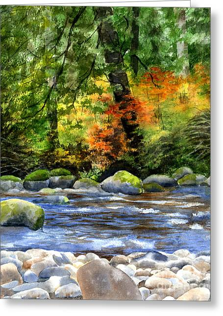 Autumn Colors In A Forest Greeting Card by Sharon Freeman