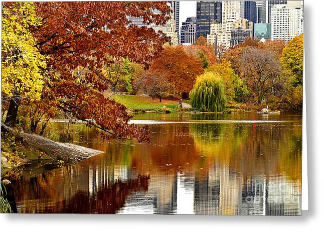 Busybee Greeting Cards - Autumn Colors in Central Park New York City Greeting Card by Sabine Jacobs