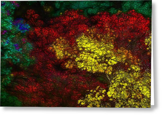 Kyoto Digital Greeting Cards - Autumn Colors Greeting Card by Jean-Marc Lacombe