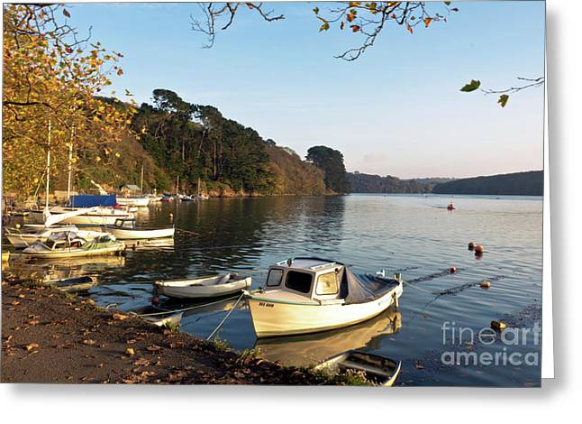 Autumn Comes To Malpas Landscape Greeting Card by Terri Waters