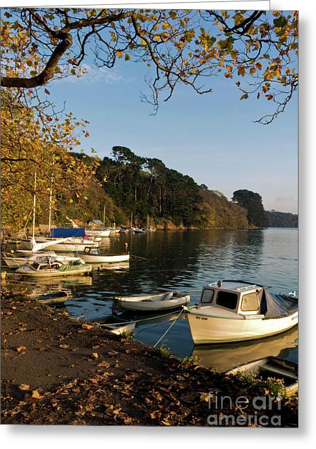 Autumn Comes To Malpas Portrait Greeting Card by Terri Waters
