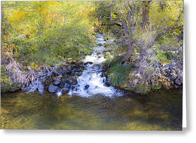 Oak Creek Greeting Cards - Autumn comes to Oak Creek Greeting Card by Gary Kaylor