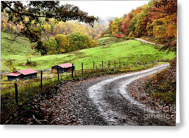 Twisting Greeting Cards - Autumn Country Road Greeting Card by Thomas R Fletcher