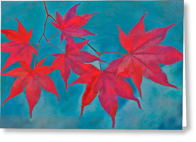 Autumn Crimson Greeting Card by William Jobes