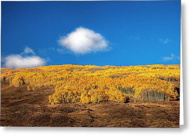Autumn Day Greeting Card by Andrew Soundarajan