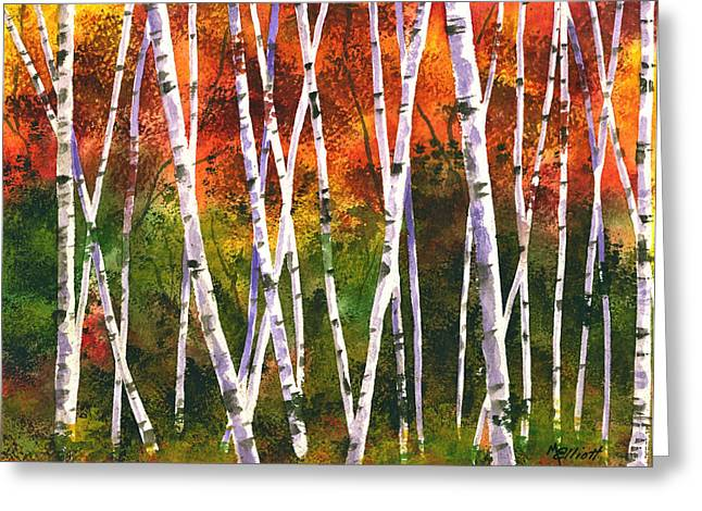 Birch Tree Greeting Cards - Autumn Daze Greeting Card by Marsha Elliott