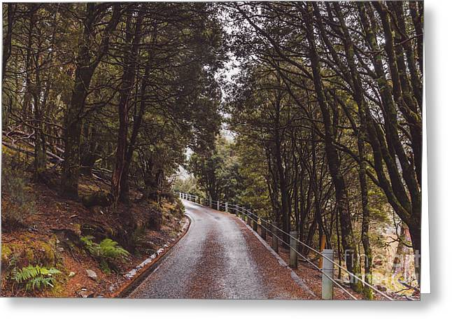 Cradle-mountain Greeting Cards - Autumn drive on pristine Cradle Mountain road Greeting Card by Ryan Jorgensen
