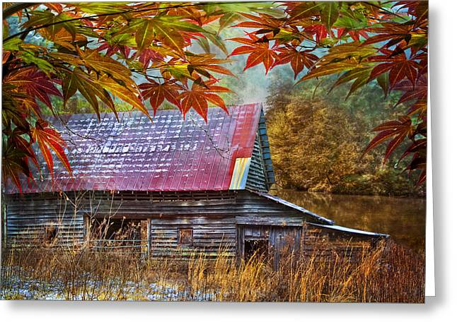 Reflections In River Greeting Cards - Autumn Embrace Greeting Card by Debra and Dave Vanderlaan