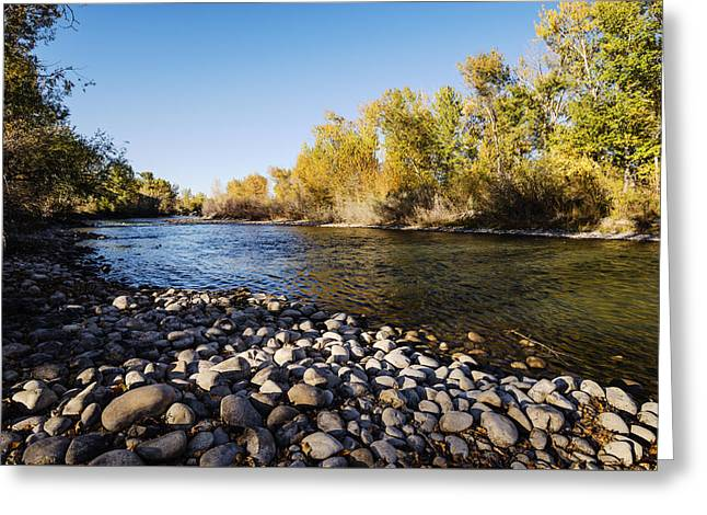 Reflections Of Sky In Water Greeting Cards - Autumn evening along Boise River Boise Idaho Greeting Card by Vishwanath Bhat