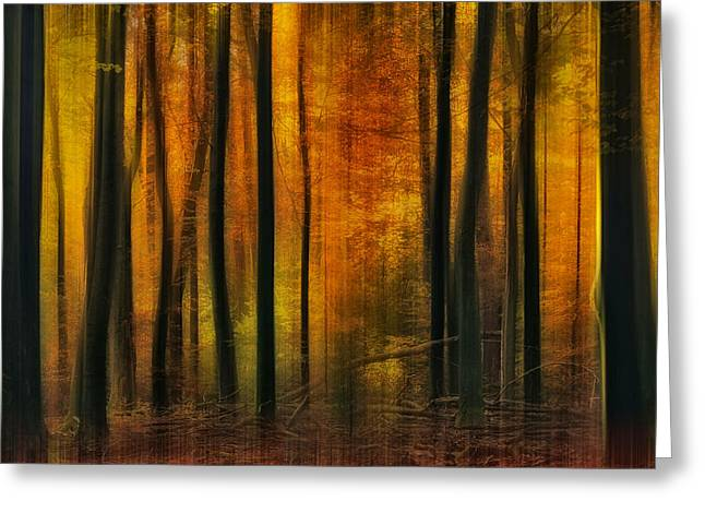 Photoshop Greeting Cards - Autumn Falls Greeting Card by Jan Paul Kraaij